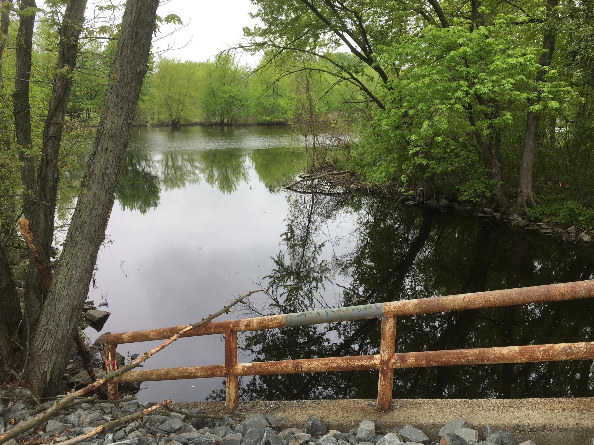 This natural area has minimal access from the Providence Highway
